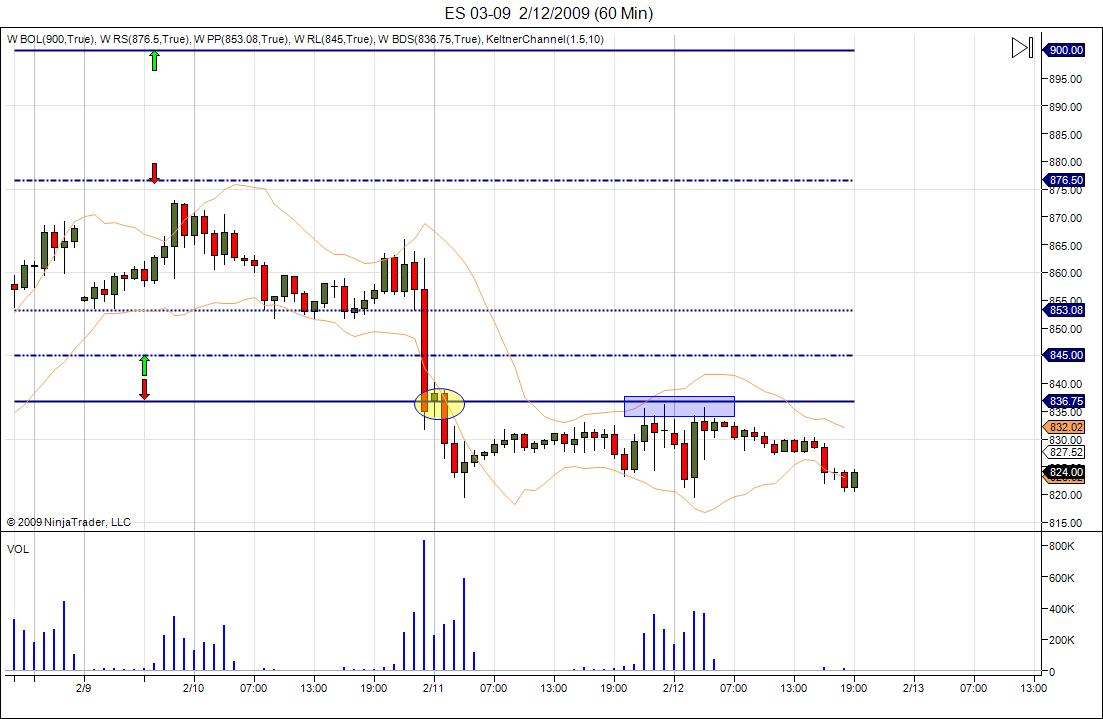 es-week-9-13-feb-update.jpg