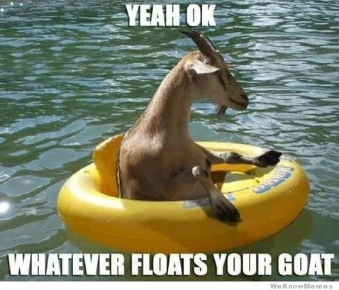 whatever-floats-your-goat.jpeg